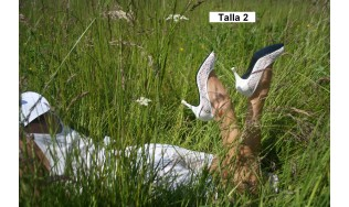 protector tacon - zapatos boda - proteger zapatos boda - tacones altos boda - calzado mujer boda
